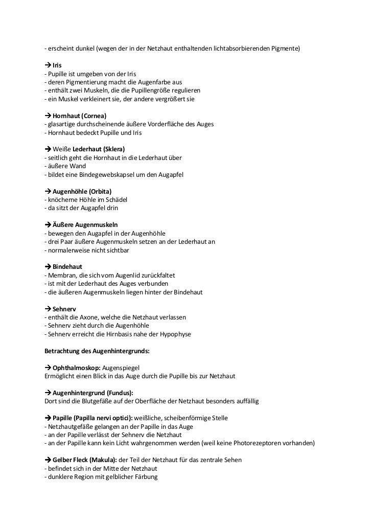 Erfreut Augenmuskeln Galerie - Anatomie Ideen - finotti.info