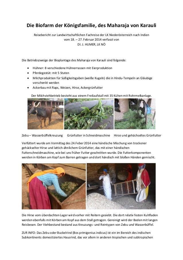 Die Biofarm der Königsfamilie, des Maharaja von Karauli Reisebericht zur Landwirtschaftlichen Fachreise der LK Niederöster...