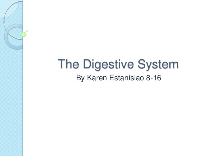 The Digestive System<br />By Karen Estanislao 8-16<br />