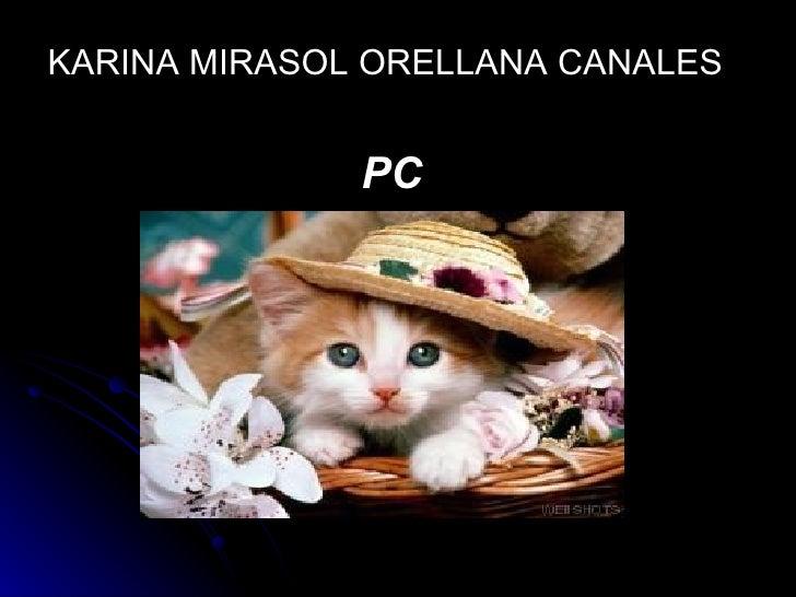 <ul><li>KARINA MIRASOL ORELLANA CANALES </li></ul><ul><li>PC  </li></ul>
