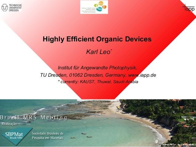 Highly Efficient Organic Devices  Karl Leo*  Institut für Angewandte Photophysik,  TU Dresden, 01062 Dresden, Germany, www...