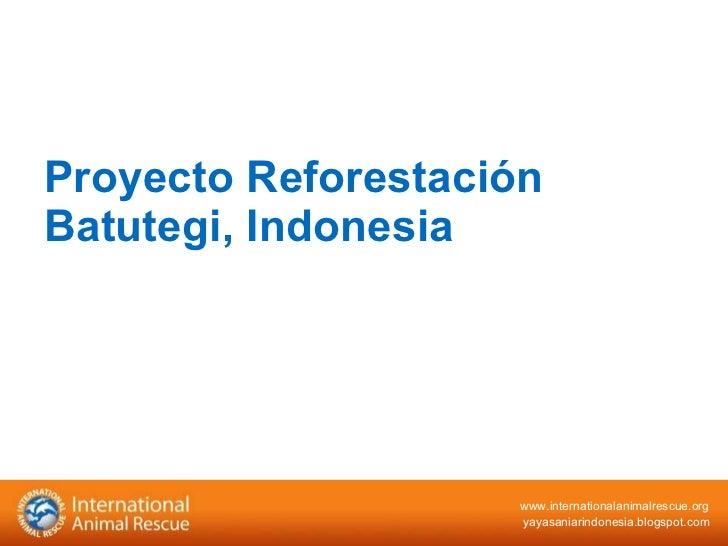 Proyecto Reforestación Batutegi, Indonesia