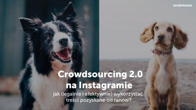 Crowdsourcing 2.0 na Instagramie jak (legalnie i efektywnie) wykorzystać treści pozyskane od fanów?