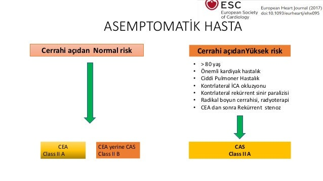 Karotis Darlığı Tedavisi, Karotis Cerrahisi, Karotis arter Ameliyatı,Stent tedavisi, Carotid artery
