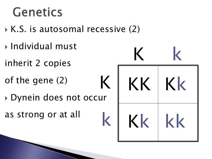 Kartagener S Syndrome Final