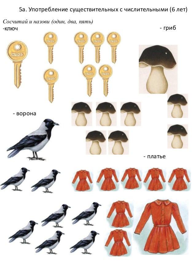 Картинки птичница