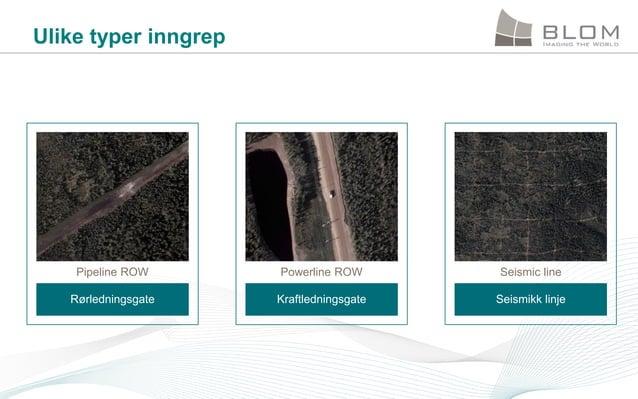 Ulike typer inngrep  Pipeline ROW  Powerline ROW  Seismic line  Rørledningsgate  Kraftledningsgate  Seismikk linje