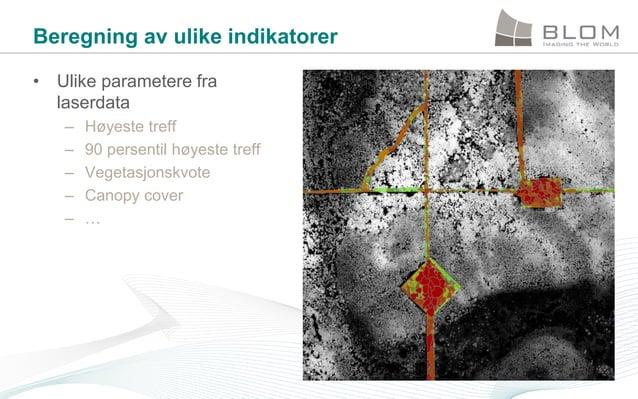 Beregning av ulike indikatorer • Ulike parametere fra laserdata – – – – –  Høyeste treff 90 persentil høyeste treff Vegeta...