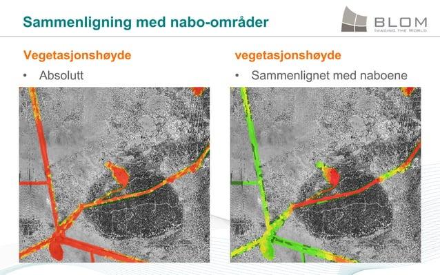 Sammenligning med nabo-områder Vegetasjonshøyde  vegetasjonshøyde  • Absolutt  • Sammenlignet med naboene
