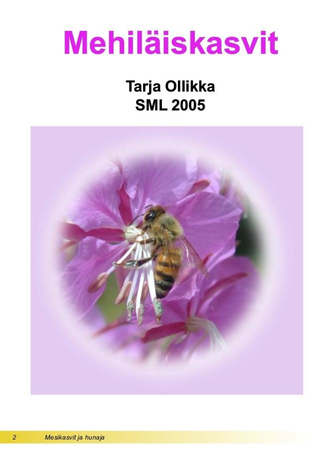 2 Mesikasvit ja hunaja Mehiläiskasvit Tarja Ollikka SML 2005