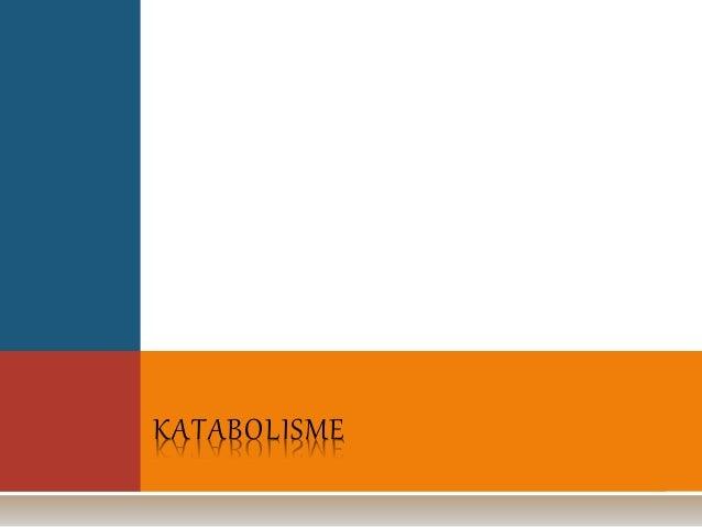 Pengertian & Contoh Metabolisme, Katabolisme dan Anabolisme
