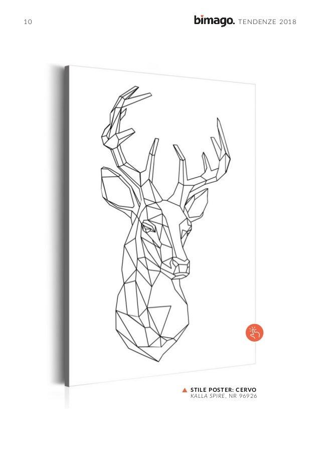 Catalogo Bimago 2018
