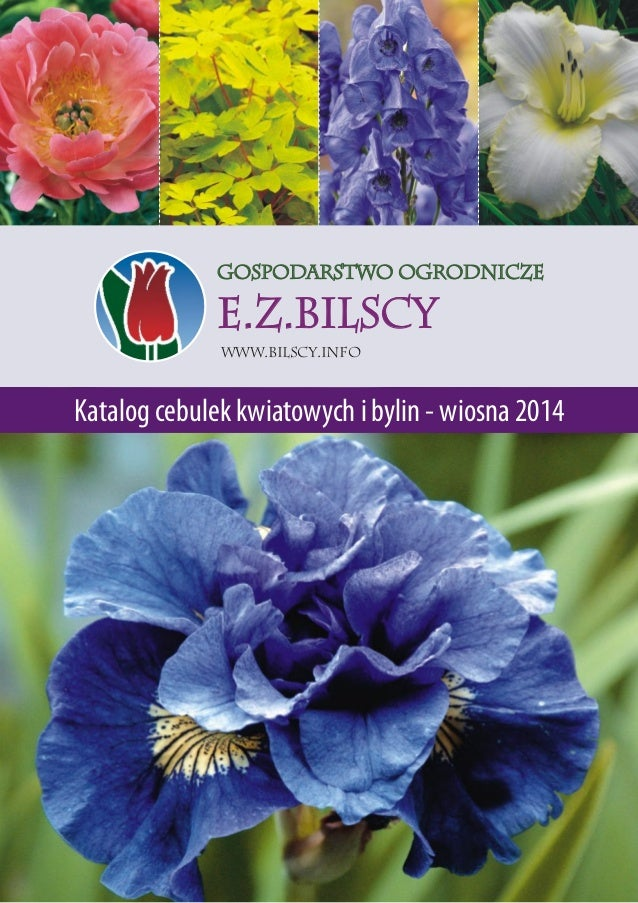 Gospodarstwo Ogrodnicze  E.Z.BILSCY Www.bilscy.info  Katalog cebulek kwiatowych i bylin - wiosna 2014