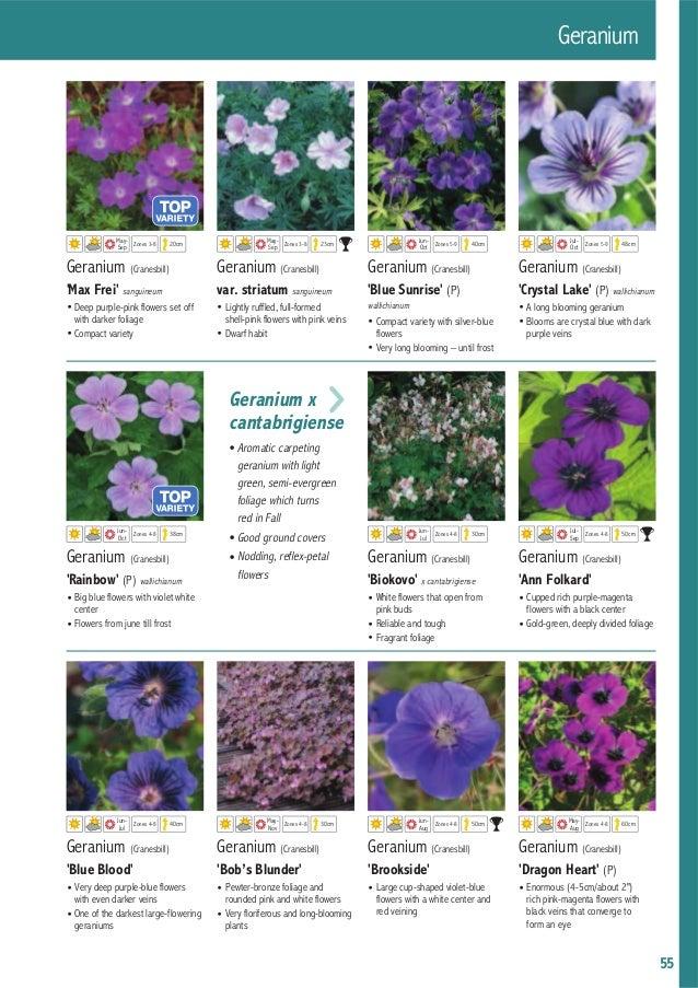 Каталог Darwin Plants 2015