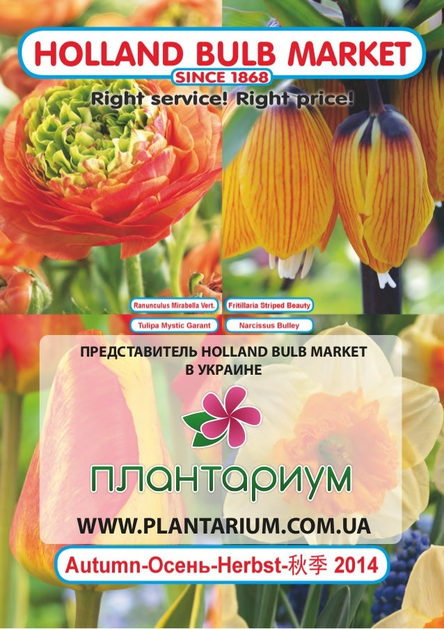 ПРЕДСТАВИТЕЛЬ HOLLAND BULB MARKET В УКРАИНЕ WWW.PLANTARIUM.COM.UA