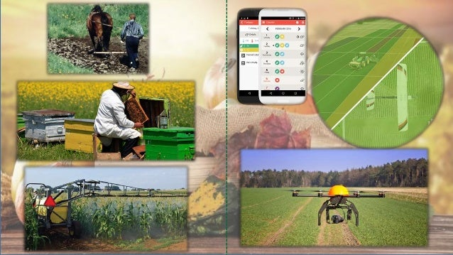 KATANA: Emerging industries as key enablers for the adoption of advanced technologies in the agrifood sector  Slide 3