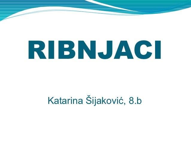 RIBNJACI Katarina Šijaković, 8.b