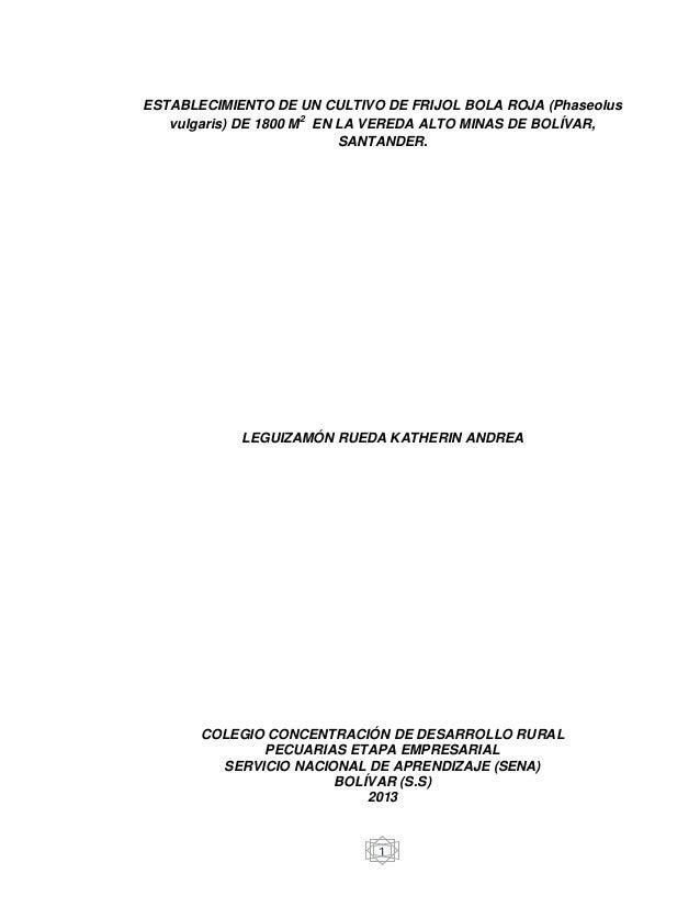 ESTABLECIMIENTO DE UN CULTIVO DE FRIJOL BOLA ROJA (Phaseolus vulgaris) DE 1800 M2 EN LA VEREDA ALTO MINAS DE BOLÍVAR, SANT...