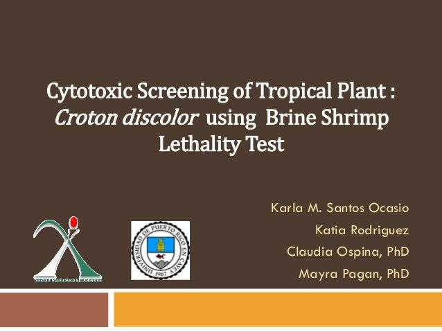 Karla M. Santos OcasioKatia RodriguezClaudia Ospina, PhDMayra Pagan, PhDCytotoxic Screening of Tropical Plant :Croton disc...