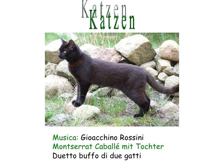 K a t z e n Musica:  Gioacchino Rossini Montserrat Caballé mit Tochter Duetto buffo di due gatti
