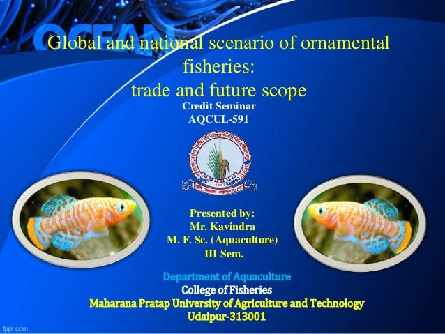 Ornamental Aquaculture Scenario