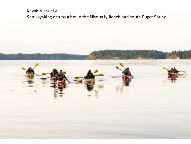 Kayak Nisqually Sea-kayaking eco-tourism in the Nisqually Reach and south Puget Sound