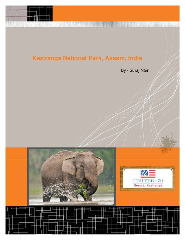 Kaziranga National Park, Assam, India                             By - Suraj Nair