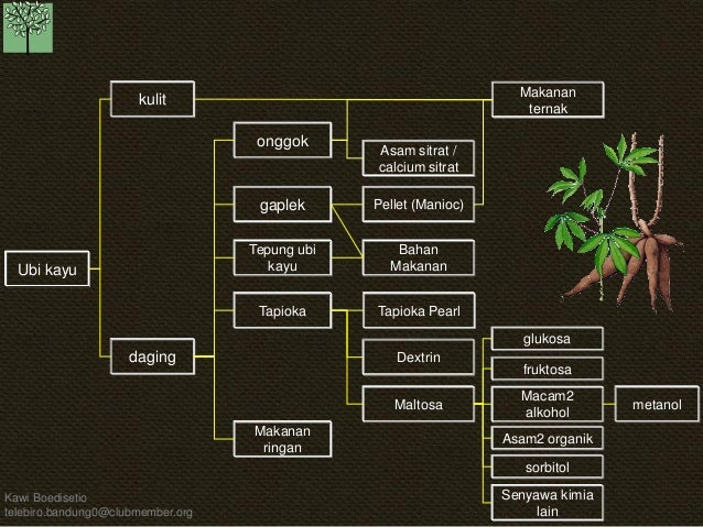 KB pohon industri-19