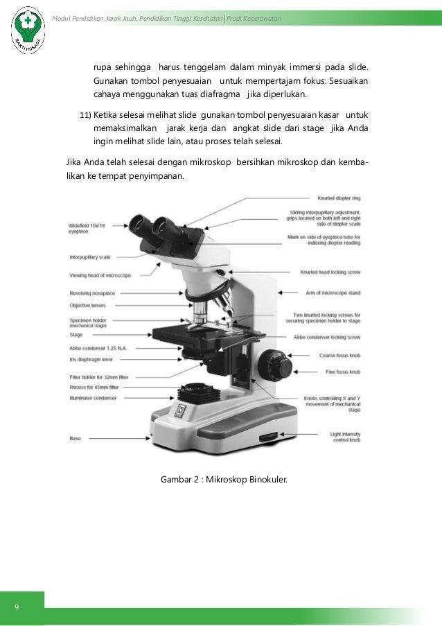 Cara menggunakan mikroskop binokuler,perawatan mikroskop