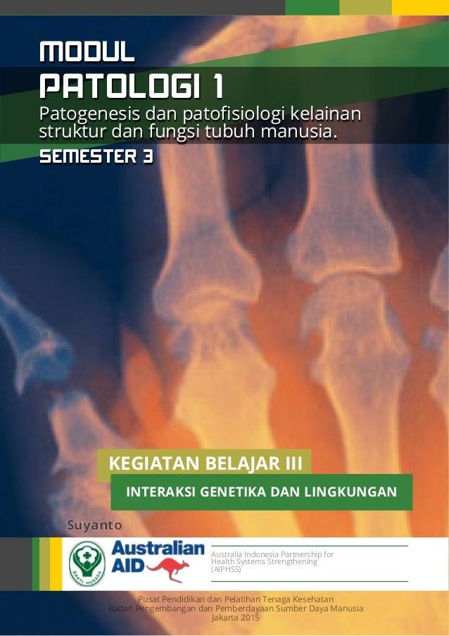 Australia Indonesia Partnership for Health Systems Strengthening (AIPHSS) Pusat Pendidikan dan Pelatihan Tenaga Kesehatan ...