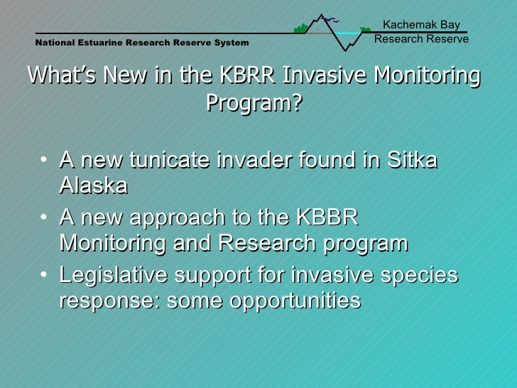What's New in the KBRR Invasive Monitoring Program? <ul><li>A new tunicate invader found in Sitka Alaska </li></ul><ul><li...