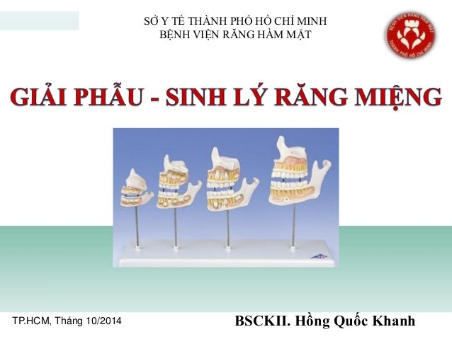 TP.HCM, Tháng 10/2014 BSCKII. Hồng Quốc Khanh SỞ Y TẾ THÀNH PHỐ HỒ CHÍ MINH BỆNH VIỆN RĂNG HÀM MẶT