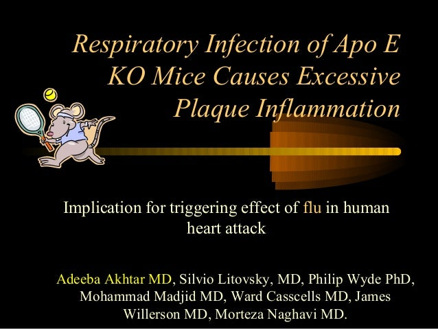 Respiratory Infection of Apo E KO Mice Causes Excessive Plaque Inflammation Implication for triggering effect of flu in hu...