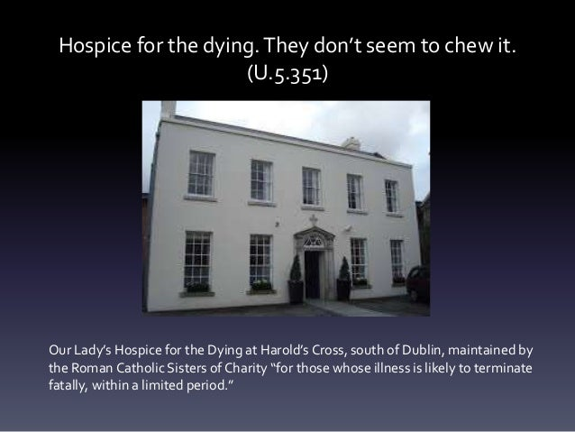 Hospice for the dying.They don't seem to chew it. (U.5.351) Our Lady's Hospice for the Dying at Harold's Cross, south of D...