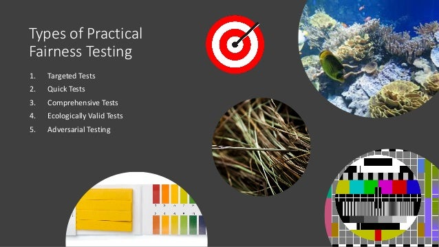 Types of Practical Fairness Testing 1. Targeted Tests 2. Quick Tests 3. Comprehensive Tests 4. Ecologically Valid Tests 5....