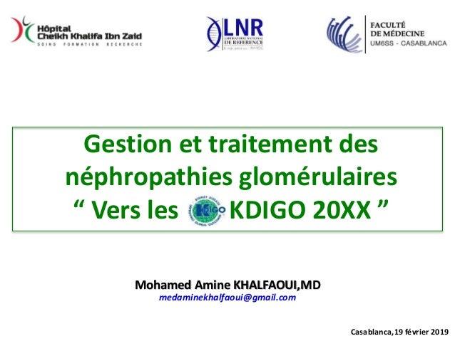 Casablanca,19 février 2019 Mohamed Amine KHALFAOUI,MD medaminekhalfaoui@gmail.com Gestion et traitement des néphropathies ...