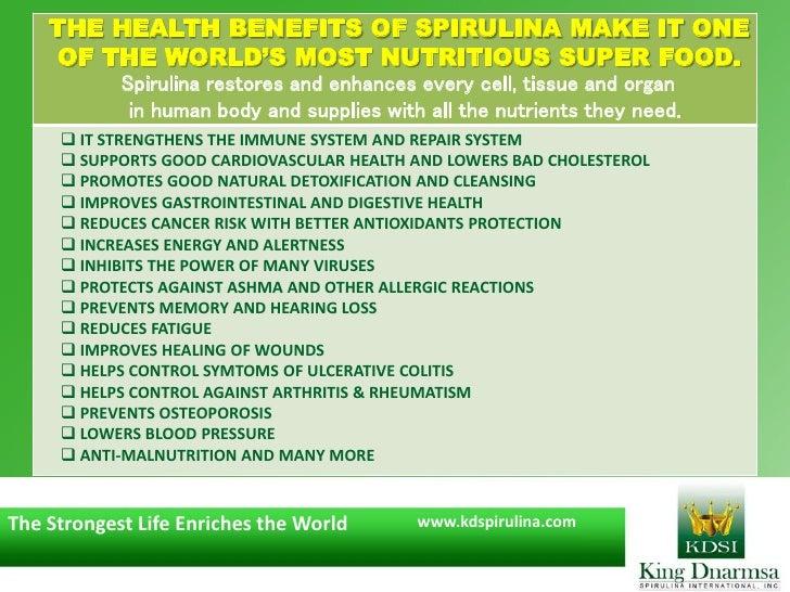 spirulina business plan
