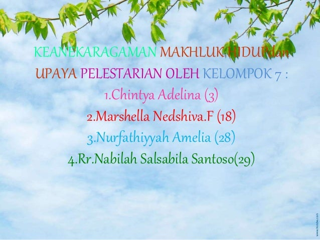 KEANEKARAGAMAN MAKHLUK HIDUPdan UPAYA PELESTARIAN OLEH KELOMPOK 7 : 1.Chintya Adelina (3) 2.Marshella Nedshiva.F (18) 3.Nu...