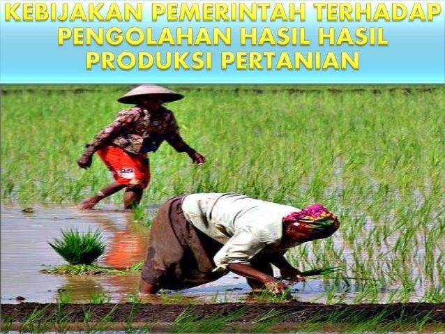 Kebijakan Pemerintah Dalam Pengolahan Produksi Hasil Pertanian