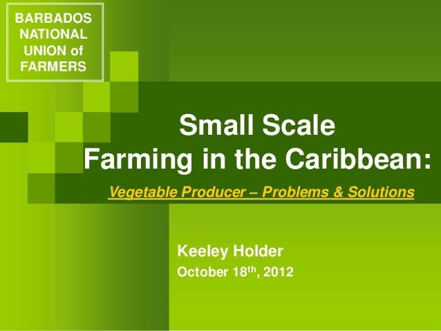 Small Scale Farming in the Caribbean: Keeley Holder October 18th, 2012 BARBADOS NATIONAL UNION of FARMERS Vegetable Produc...