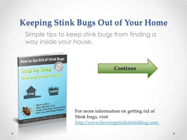 How to keep water bugs out of your house 28 images 6 for How to keep spiders out of the house