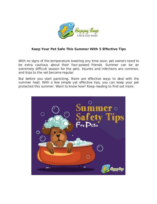 Keep Your Pet Safe This Summer With 5 Effective Tips With no signs of the temperature lowering any time soon, pet owners n...