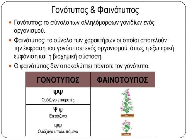 Γονότυπος & Φαινότυπος  Γονότυπος: το σύνολο των αλληλόμορφων γονιδίων ενός οργανισμού.  Φαινότυπος: το σύνολο των χαρακ...
