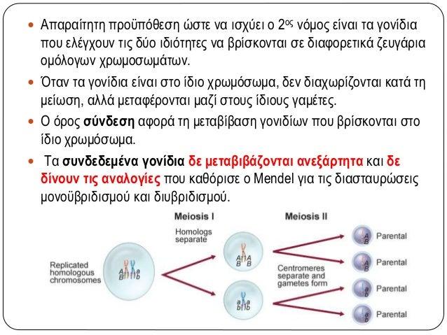 Συνεπικρατή γονίδια  Στα ετερόζυγα άτομα εκφράζονται και τα δύο αλληλόμορφα στον φαινότυπο. P1 CRCR  CWCW Γαμέτες: CR CW...