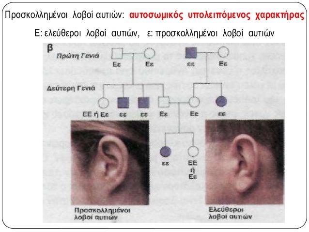 Μελέτη γενεαλογικών δέντρων  Ένα αλληλόμορφο είναι υπολειπόμενο, εάν από γονείς που δεν φέρουν το χαρακτηριστικό που ελέγ...