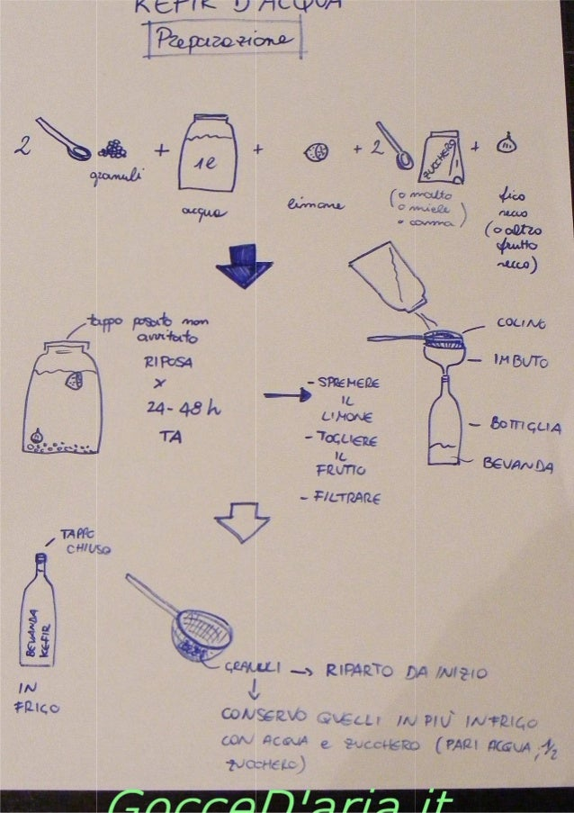 Kefir d'acqua   istruzioni
