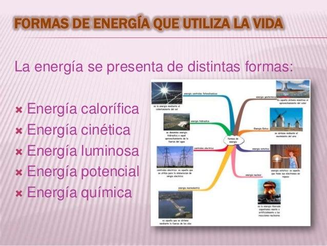 FORMAS DE ENERGÍA QUE UTILIZA LA VIDALa energía se presenta de distintas formas: Energía calorífica Energía cinética En...