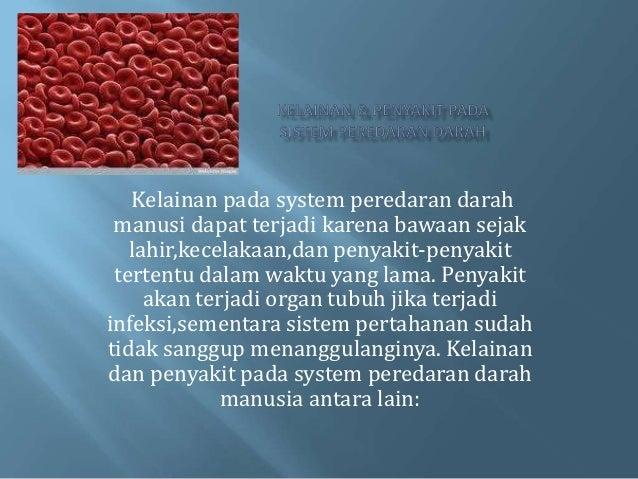 Kelainan pada system peredaran darah manusi dapat terjadi karena bawaan sejak   lahir,kecelakaan,dan penyakit-penyakit ter...