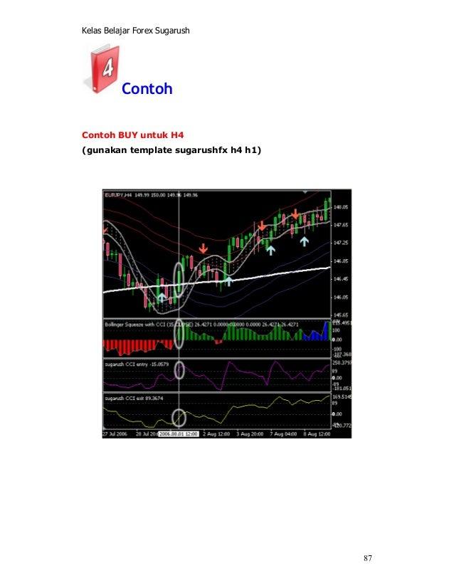 Sugarush forex template chilton investment company wikipedia