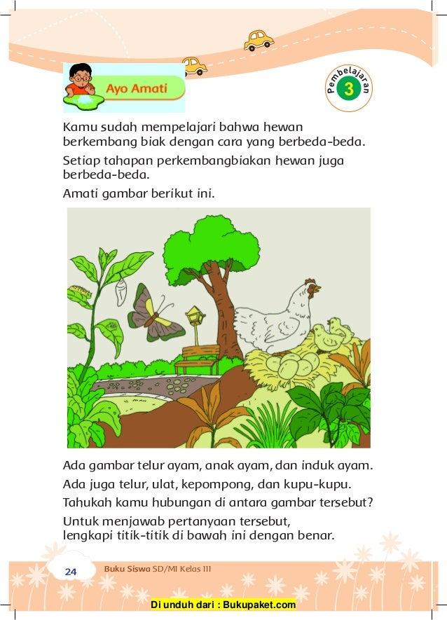 Kelas Iii Tema 1 Perkembangbiakan Hewan Dan Tumbuhan